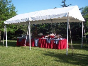 marquee-frame-tent & Party Rental Tent Styles for Sale. Look at our different Tents.